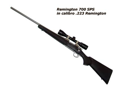 carabina per cartuccia .223 Remington