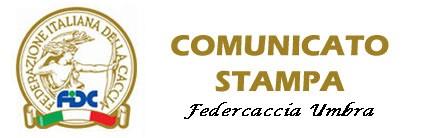 FIDC UMBRIA