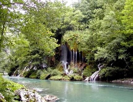 Caccia Montenegro