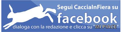 facebook cacciainfiera