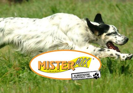 mistermixdog alimenti cani da caccia