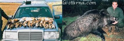 agenzia caccia la starna serbia