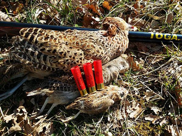 sparare caccia terzo colpo fucile semiautomatico
