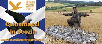 sassetti caccia in scozia