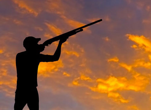 sparare in aria caccia cane aggressione