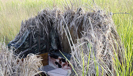 caccia umbria preapertura fernanda cecchini