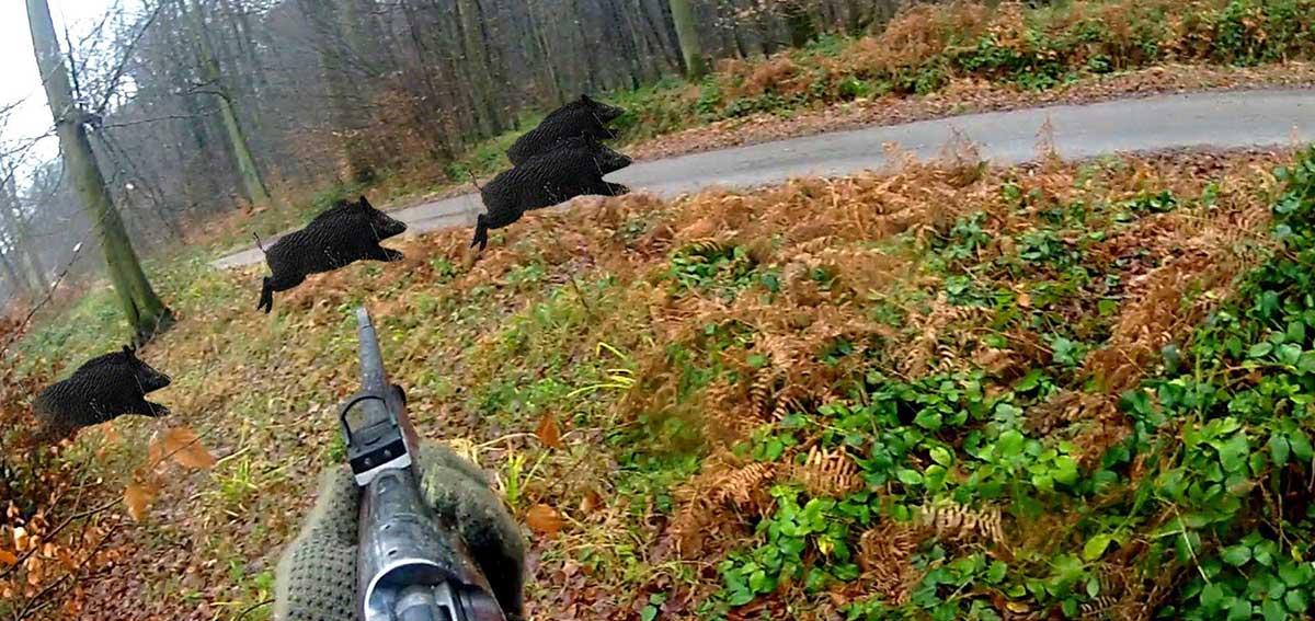 campagna anticaccia lav prudenza incidenti di caccia