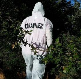 cacciatori bosco vercellese cadavere carabinieri