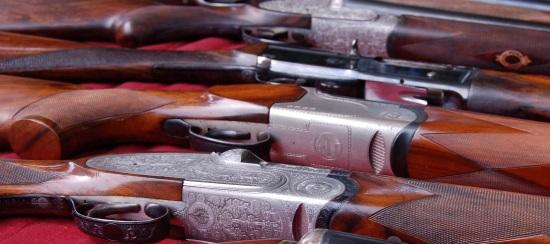 caretta interrogazione parlamentare salvini riabilitazione porto armi