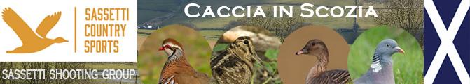 caccia in scozia sassetti oche anatre beccaccia gennaio 2019