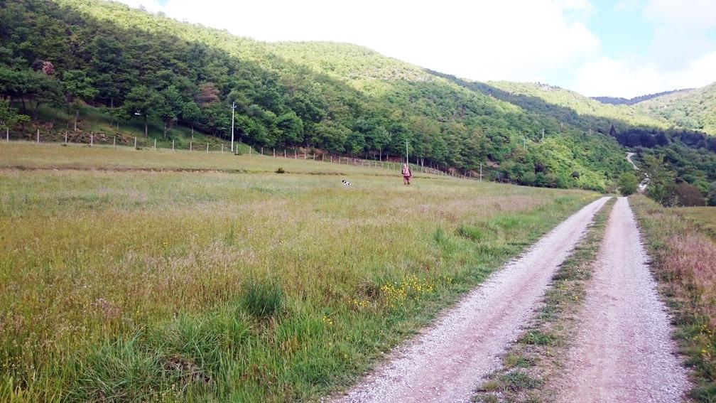 riserva di caccia modena cortona pernice rossa fagiano starna