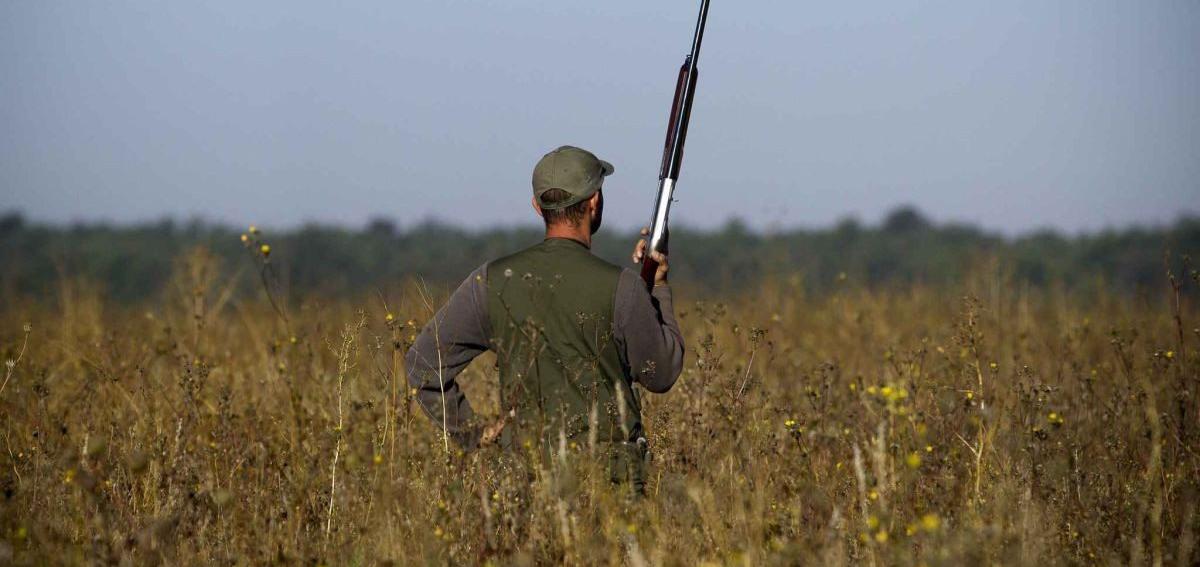 regione puglia tar sospensione della caccia