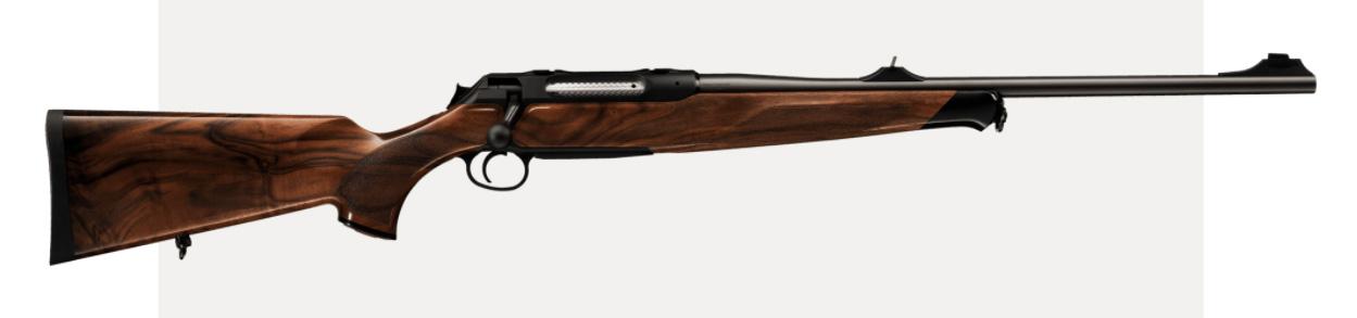 sauer & sohn armi da caccia e da tiro