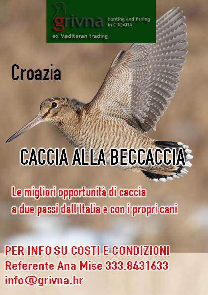caccia alla beccaccia croazia