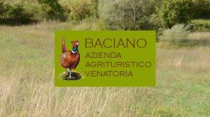 AGRITURISTICO VENATORIA BACIANO: PREPARIAMO IL CANE DA CACCIA