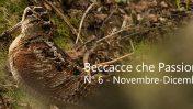 BECCACCE CHE PASSIONE IN EDICOLA