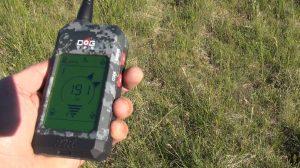 HO ALLENATO A FIORDIMONTE CON GPS X20
